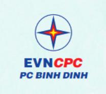 Công ty Điện lực Bình Định